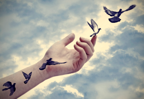 Bird-tattoos-come-to-life-freedom-78346529